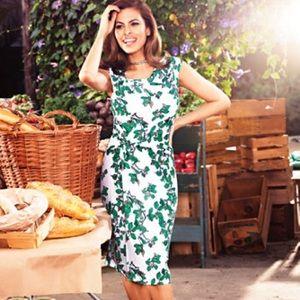 Eva Mendez NY&Co Ivy Print Dress Size 12